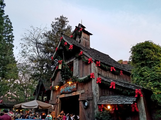 17 - splash mountain xmas - (peg)
