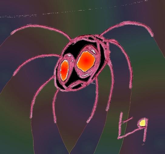 spider (in a dark web) (9 nov. 2018) by rfy - (peg)